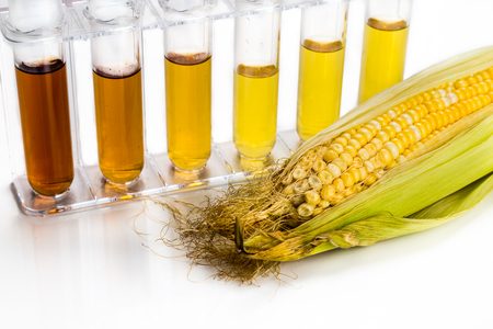ethanol: Corn generated ethanol biofuel with test tubes on white background