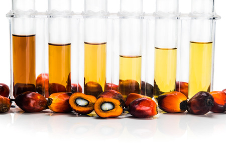 experiments: Oil palm biofuel biodiesel with test tubes on white background