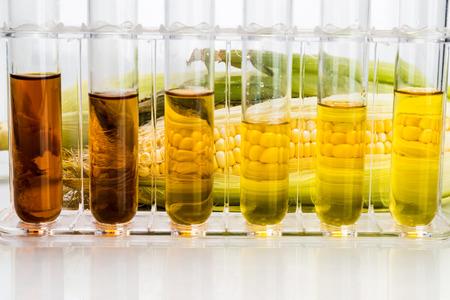 Maíz generada biocombustible etanol con tubos de ensayo sobre fondo blanco