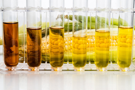 jarabe: Maíz generada biocombustible etanol con tubos de ensayo sobre fondo blanco