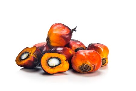 oil industry: Heaps of freshly harvested oil palm fruits on white background