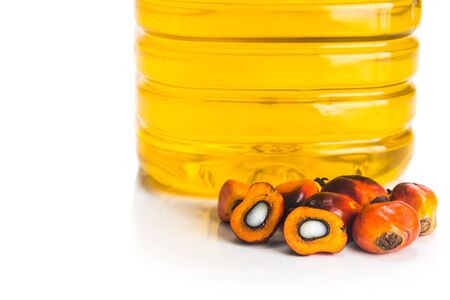 refined: Refined palm oil in bottle with fresh oil palm fruits