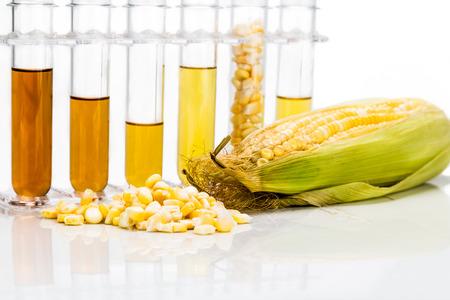 옥수수는 흰색 배경에 테스트 튜브와 에탄올 biofuel 생성