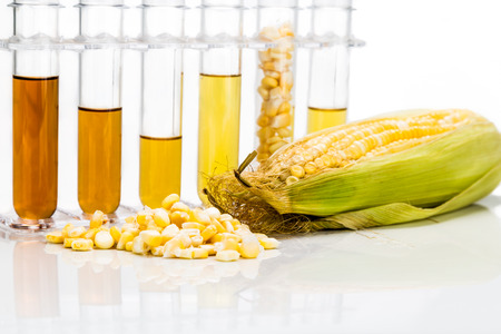 Maïs gegenereerd ethanol biobrandstof met reageerbuizen op een witte achtergrond Stockfoto