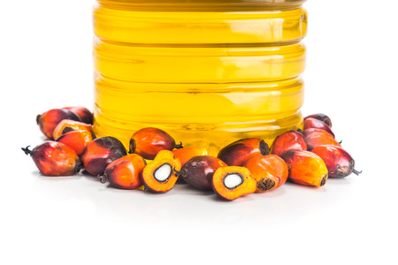 red palm oil: Refined palm oil in bottle with fresh oil palm fruits