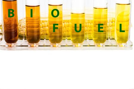 Maíz genera etanol en tubos de ensayo con la palabra biocombustibles. Foto de archivo - 46986280