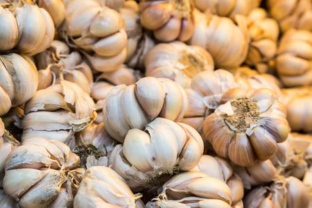 garlic: Ciérrese para arriba en el montón de todo el ajo blanco con el foco en la parte media Foto de archivo