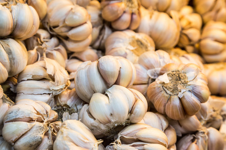 garlic: Close up on heap of whole white garlic with focus on the middle piece