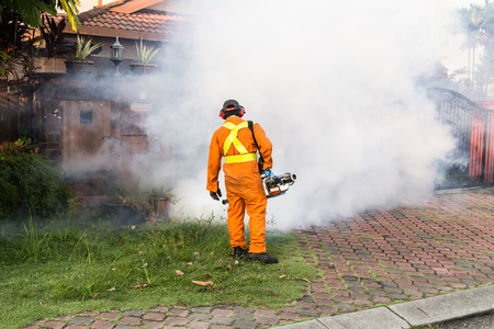 breeding ground: Worker fogging residential area with insecticides to kill aedes mosquito breeding ground, carrier of dengue virus