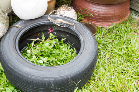 breeding ground: Used tyres potentially store stagnant water and become mosquitoes breeding ground