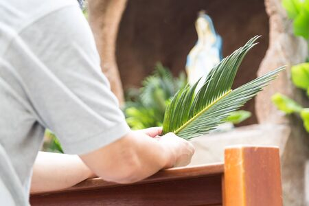 christianity palm sunday: Catholic parishioners kneel while holding palm leaf in front of de-focused generic grotto with Mother Mary Stock Photo