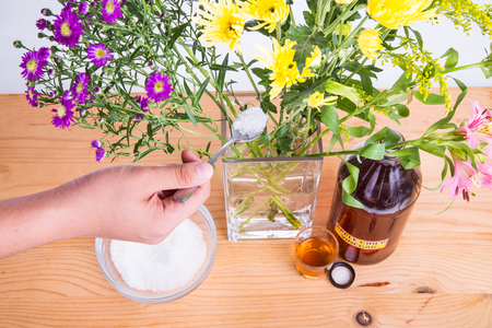 nourishment: Add apple cider vinegar and sugar into vase with water to keep cut flowers fresher. Contains anti-bacterial and nourishment properties. Stock Photo