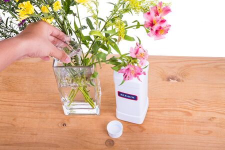 bleach: Add liquid bleach into vase with water to keep cut flowers fresher. Anti-bacterial properties.