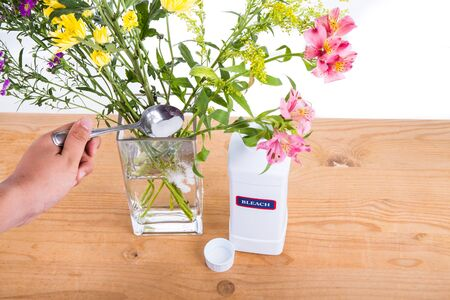 bleach: Add bleach powder into vase with water to keep cut flowers fresher. Anti-bacterial properties.