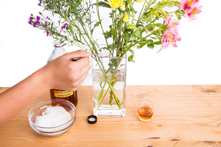 antibacterial: Add apple cider vinegar and sugar into vase with water to keep cut flowers fresher. Contains anti-bacterial and nourishment properties. Stock Photo