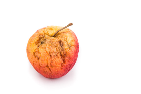 decompose: Rotten and decomposing red organic apple on white background