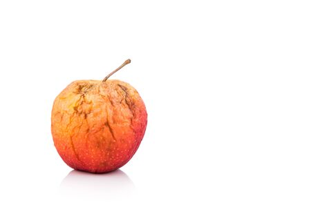 decomposing: Rotten and decomposing red organic apple on white background