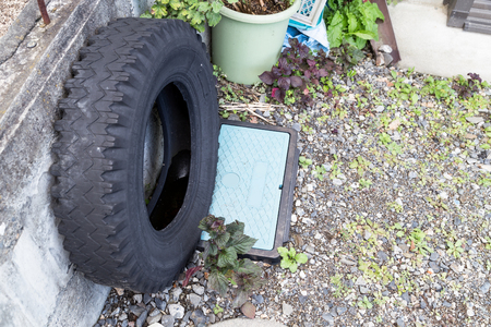 standing water: Used tires at garden traps rain water risk breeding ground for mosquito Stock Photo