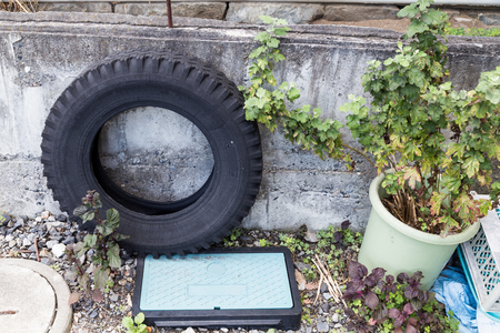 breeding ground: Used tires at garden traps rain water risk breeding ground for mosquito Stock Photo