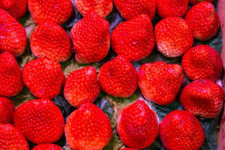 Fresh organic sweet and juicy strawberries arranged neatly  for sale