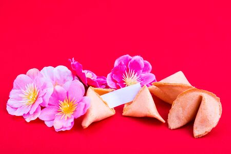 Chinese fortune cookies with decorative plum blossom flowers and blank predictive label on red background
