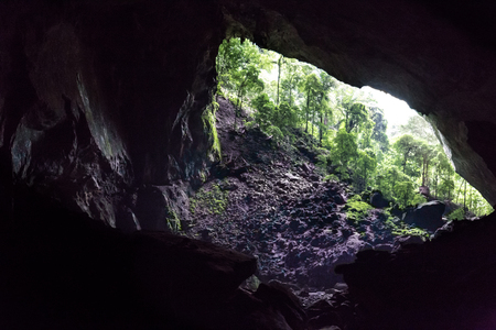 Chamber and entrance of Deer Cave, Mulu National Park, Sarawak, Malaysia Stock Photo