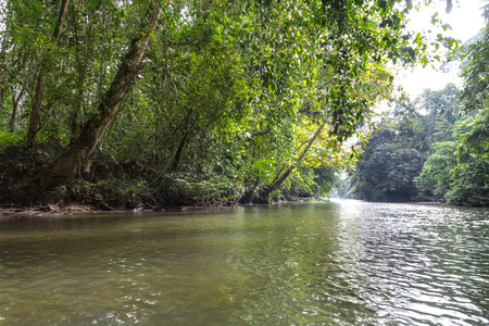 Scenic Merlinau river, provides logistic access and transportation channel at Mulu National Park, Sarawak, Malaysia