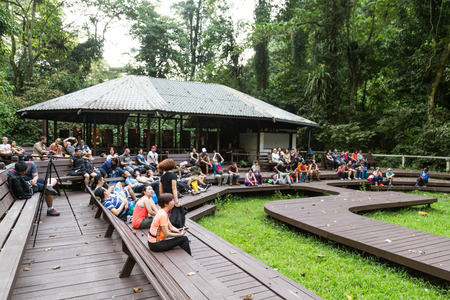 Mulu, Sarawak, September 1, 2018: Tourists gather to watch the daily bats exodus from Deer Caves at Mulu National Park for feeds of insects and food. Editorial