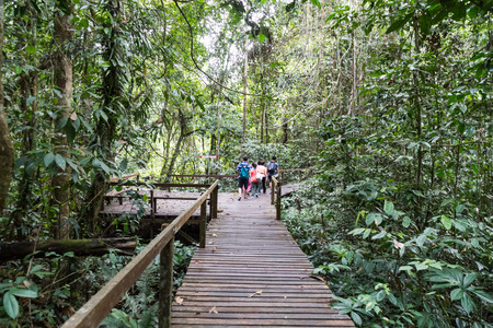 Tourist waking on board trail into Mulu National Park with numerous caving attractions