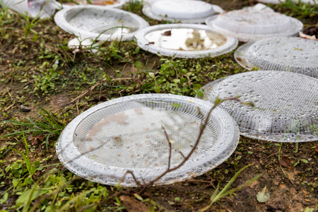 Still water collected on rubbish at dump site become breeding ground for mosquito