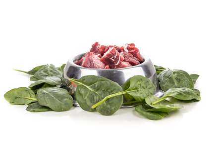 Serving of raw barf beef meat chunk for dog meal with spinach vegetable