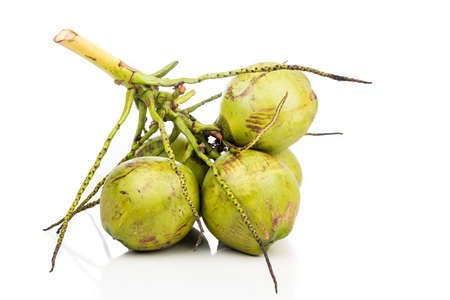 Bunch of young coconut fruits with stem on white background 写真素材