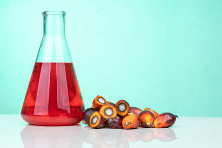 Red color unrefined palm oil and fruits with beaker in laboratory
