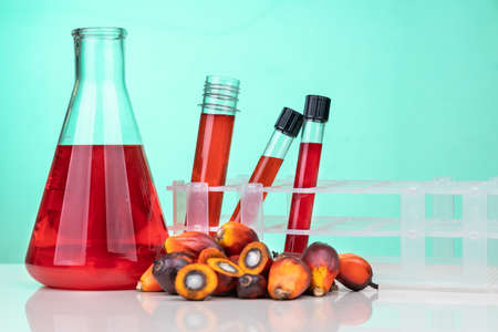Red color unrefined palm oil and fruits with beaker test tube in laboratory