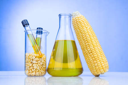 Ethanol biofuel derived from corn maze with beaker test tubes in laboratory on blue background 写真素材