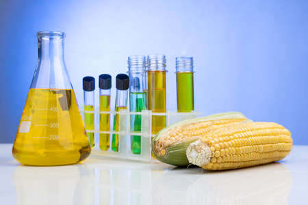 Ethanol biofuel derived from corn maze with beaker test tubes in laboratory