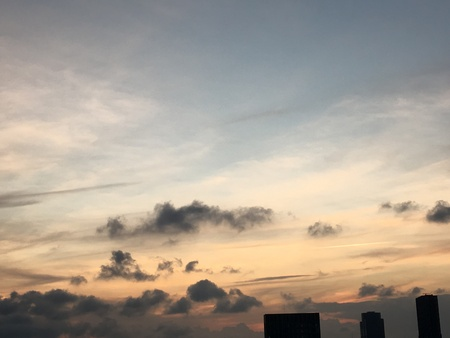 sumida ward: The evening sky
