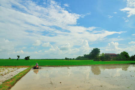 farmer ride rice tractor for preparing the ground for rice plantation. Stock Photo - 9704202