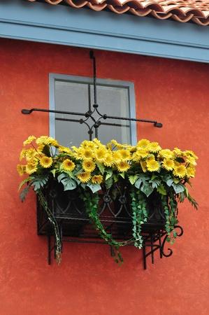 Europena style window photo