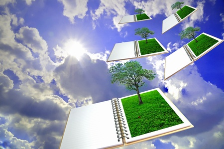 open book with tree flying to the sun  photo
