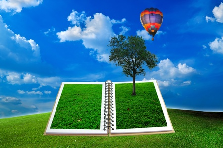 Open book with tree and hot air balloon over green field and blue sky Stock Photo - 10582341