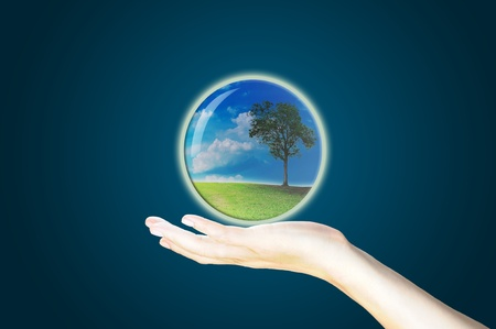 Crystal ball on hand. Stock Photo - 10834064