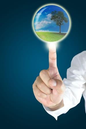 Business male hand touch the crystal ball with tree inside photo