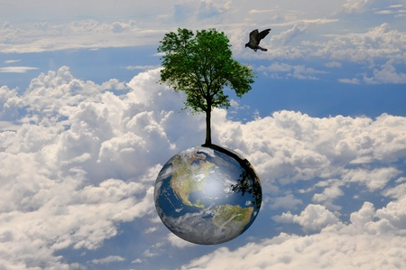 joy of life: Earth globe and lonely tree with little bird over the nice cloud and sky Stock Photo