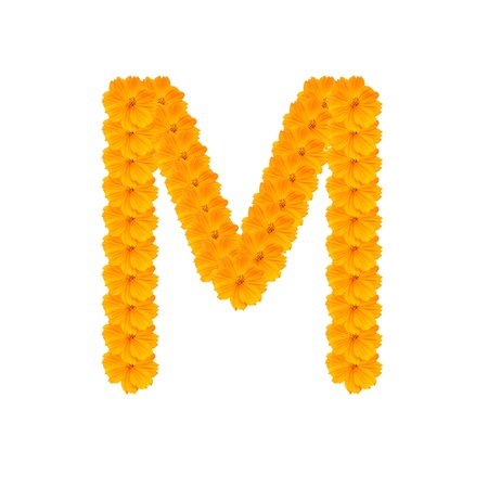 alphabet M from yellow and orange flowers. Isolated on white background. With clipping path photo