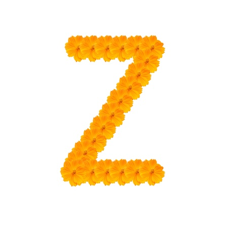 clippng: alphabet Z from yellow and orange flowers. Isolated on white background. With clipping path