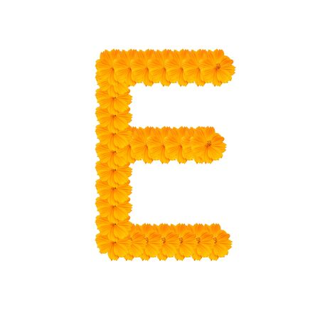 clippng: alphabet E from yellow and orange flowers. Isolated on white background. With clipping path Stock Photo