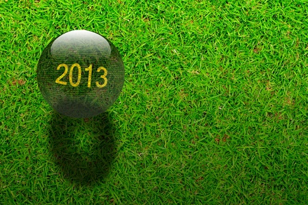Crystal ball with year 2013 on Green grasses background photo