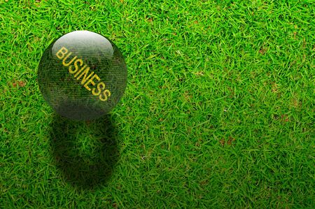 Crystal ball with the word Business on Green grasses background photo