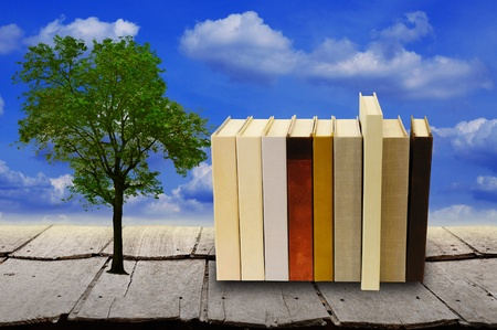 field study: Stack of book with lonely tree with blue sky and wood floor Stock Photo